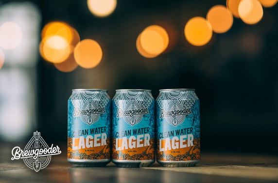 24 cans of Brewgooder lager delivered - just over £1 per can