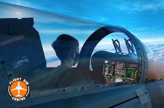 Flight simulation experience