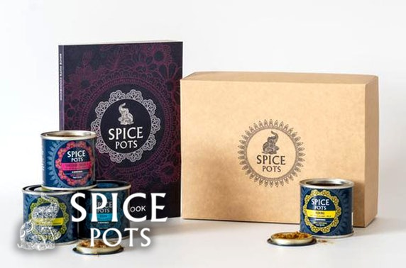 Authentic Indian spice kits