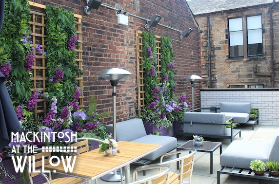 Rooftop sharing platter & drinks, Mackintosh at the Willow