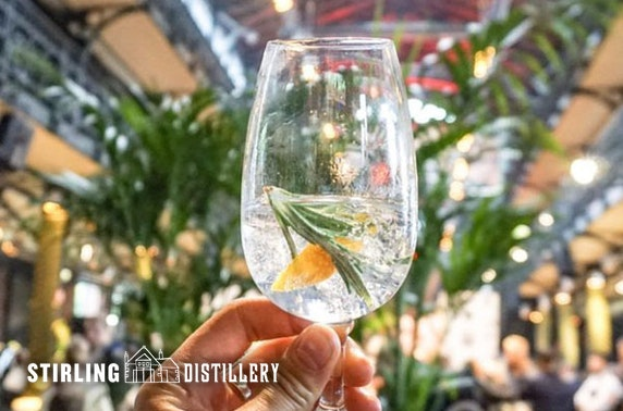 Stirling Distillery Gin School experience