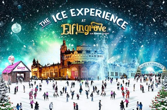 Elfingrove: The Ice Experience